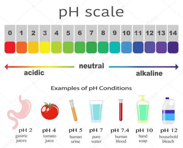 ph schaal alkaline water ionisator gezond water